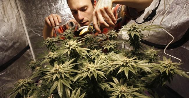 Joy to the weed! Marijuana legalization comes bearing gifts