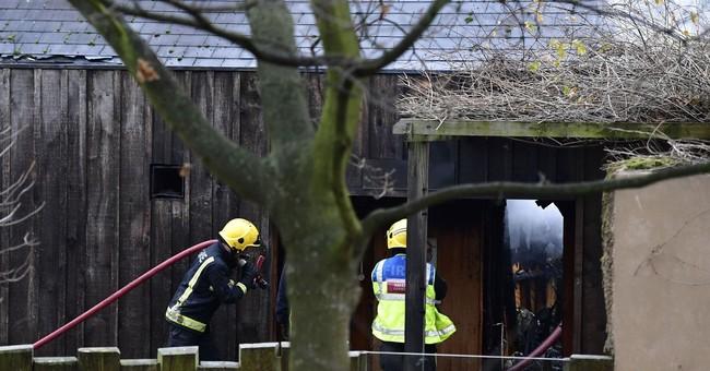 London Zoo fire:  1 aardvark dead, 4 meerkats presumed dead