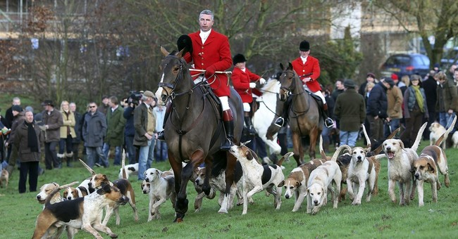 UK police check reports of illegal post-Christmas fox hunts