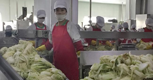 Secret Sauce? Kim Jong Un applies science to kimchi-making