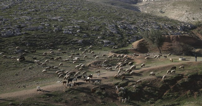 Israeli allies condemn settlement law as lawsuits loom