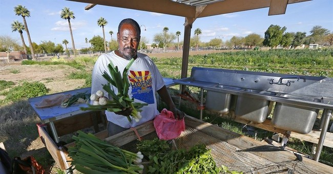 Phoenix urban garden mysteriously closes amid land dispute