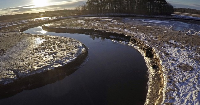 As sea levels rise, vital salt marshes are disappearing