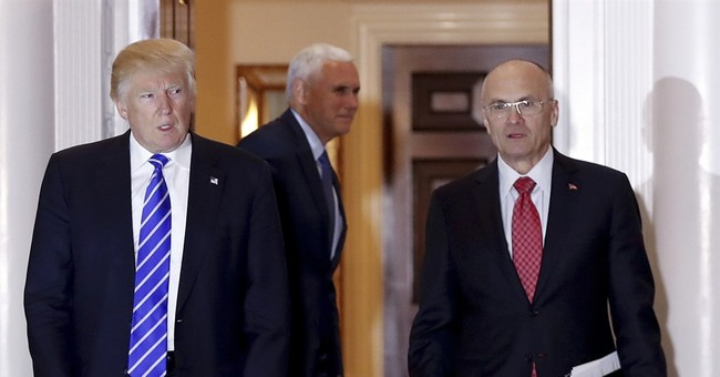 Puzder withdrawal stark example of rough start for Trump WH
