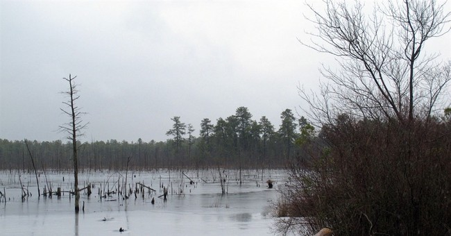 The Latest: Hotly contested Pinelands pipeline approved