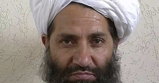 Taliban leader encourages people to plant trees