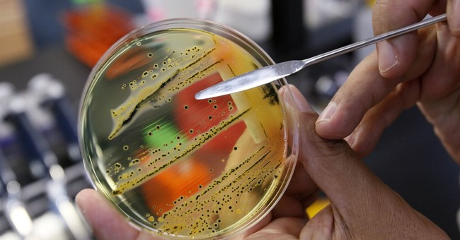 The dirty dozen: UN issues list of 12 most worrying bacteria