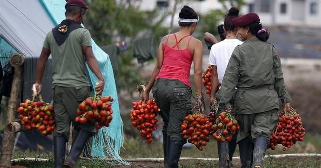Colombian rebels take step toward surrendering weapons