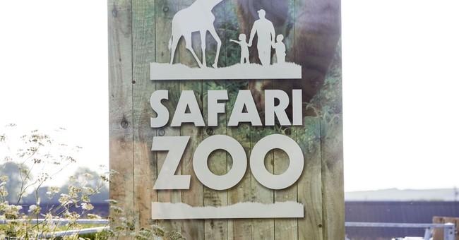 UK zoo gets license rejected after hundreds of animal deaths