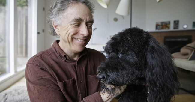 Pot for pets: Owners treat sick animals with cannabis