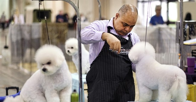 PHOTO GALLERY: 'Beverly Hills Dog Show' to debut