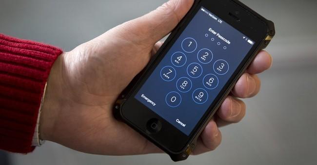 FBI deletes details about hacking effort in document release