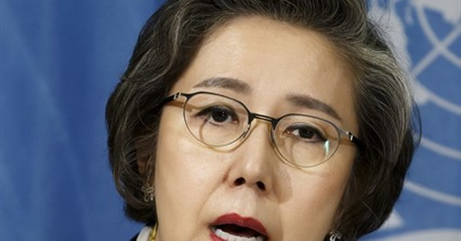 Rapporteur 'disappointed' UN rights panel divided on Myanmar