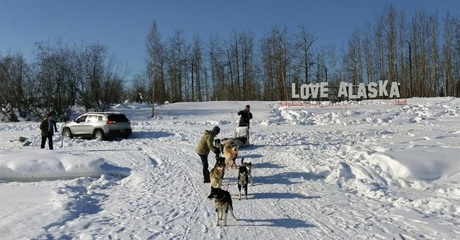 Alaska sled dogs team up, pull tourists' stuck SUV from snow