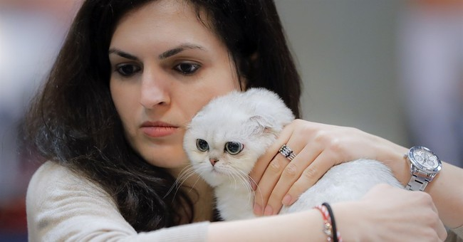 Slobbery kisses: Romania hosts show for 1,600 exotic pets
