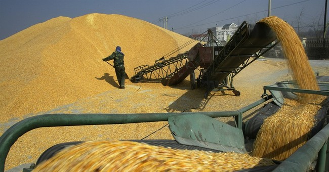 US group seeks better access to China's farm goods market