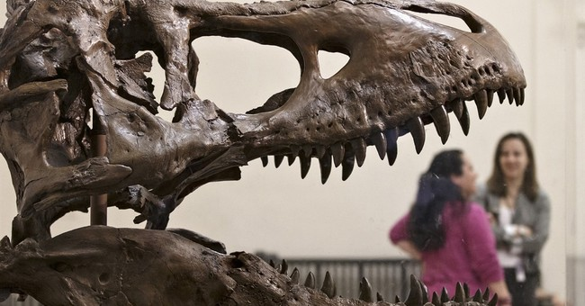 Correction: Dinos on Move story
