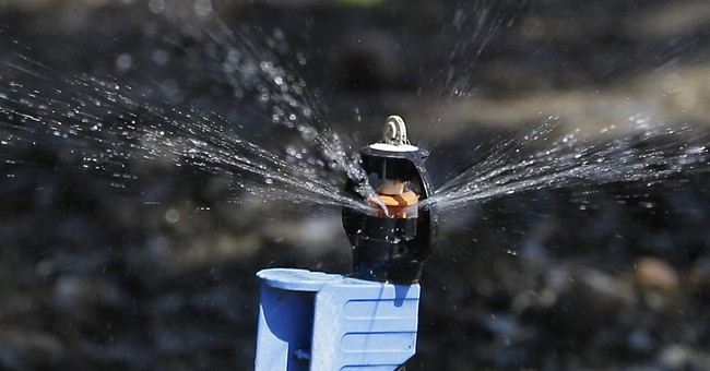 Agency: California farmers will get bump in irrigation water
