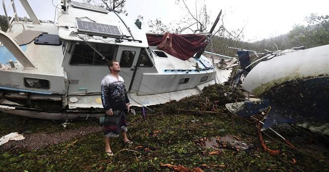 Sharknado? Australian cyclone leaves behind shark in puddle