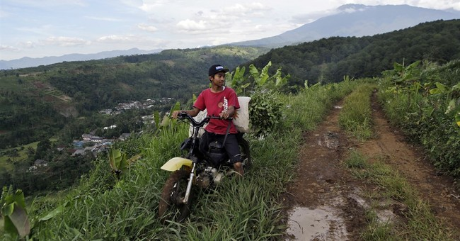 Fears for Indonesian park's rare species as Trump town rises