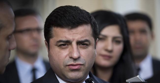 Jailed pro-Kurdish party leader begins hunger strike
