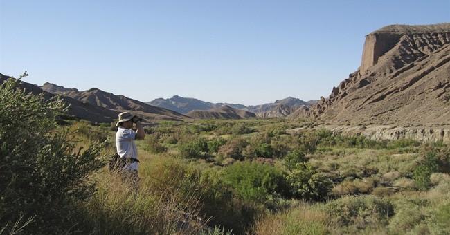 'BioBlitz' scientists to survey California desert valley