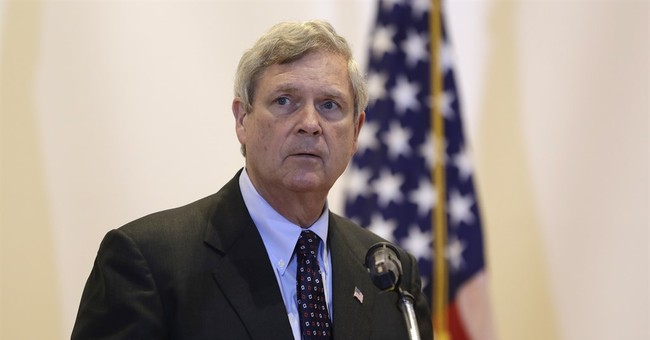 Senate Confirms Tom Vilsack as Secretary of Agriculture
