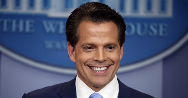 Scaramucci Explains the Scaramucci Post's Bizarre Holocaust Poll