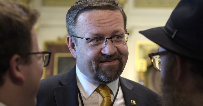 Gorka: Many in the WH Don't Agree with the MAGA Platform
