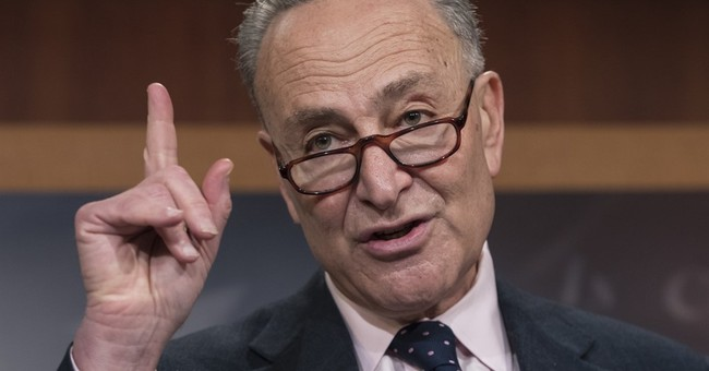 Schumer to Oppose DeVos, Says She Would 'Single-handedly Decimate Our Public Education System'