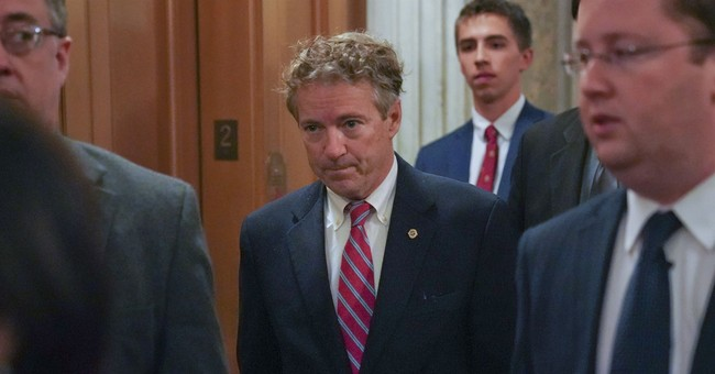 MSNBC Reporter: Rand Paul Being Beaten Up Is 'One Of My Favorite Stories'