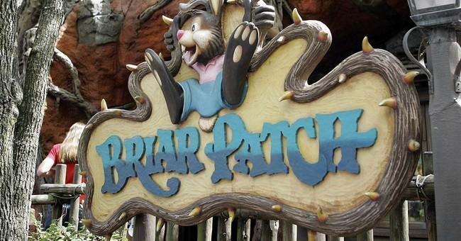 Disney Bows to Mob, Announces Plans to Retheme Splash Mountain