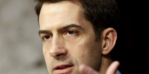 Tom Cotton Blasts Media for Not Asking Questions About Warnock's Arrest in Child Abuse Investigation