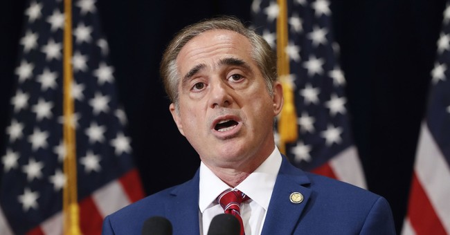 Report: VA Secretary Shulkin Turned Summit in Europe into 'Sightseeing' Trip
