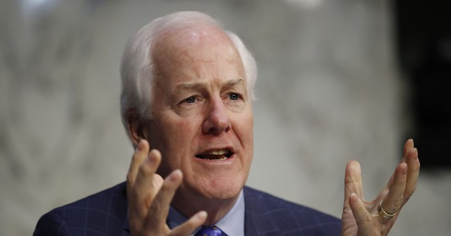 Sen. Cornyn: China to blame for coronavirus, because 'people eat bats'