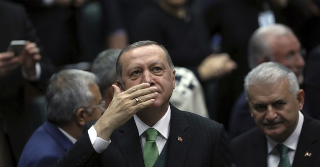 Erdogan: NATO must take stance against US over border force