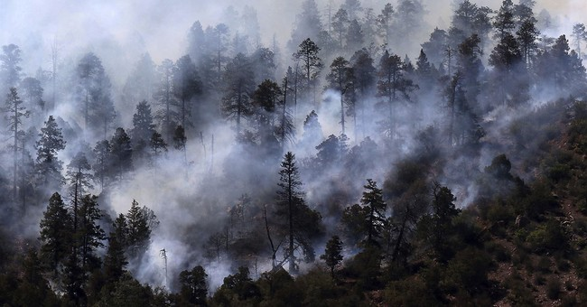 Colorado wildfire expected to reach homes after evacuations