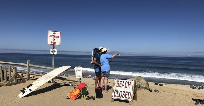 Man Dies from Shark Attack While Boogie Boarding on Cape Cod Beach