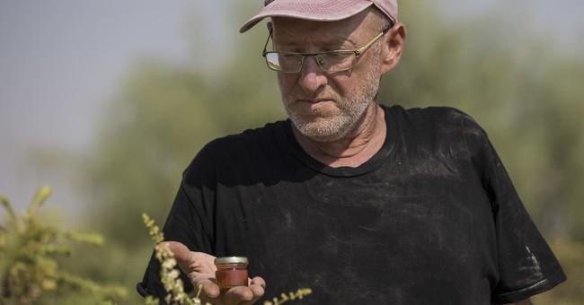 Israeli frankincense farmer cashes in on rare honey