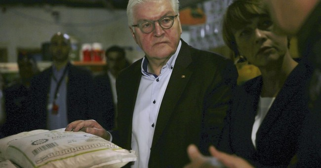 German president: Syria not ready for mass refugees return