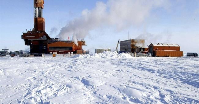 Groups sue to overturn Alaska petroleum reserve lease sale