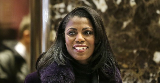 Omarosa says on 'Big Brother' country is not going to be OK