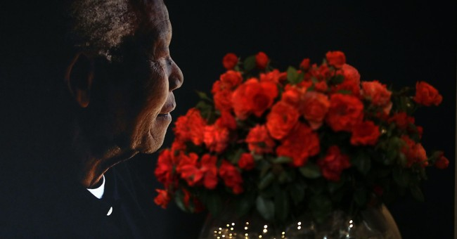 Nelson Mandela rose makes debut ahead of Valentine's Day