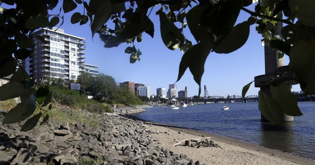 Oregon sues Monsanto over PCB pollution in waterways, soil