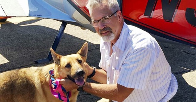 Colleagues make pet rescue flight in honor of missing pilot