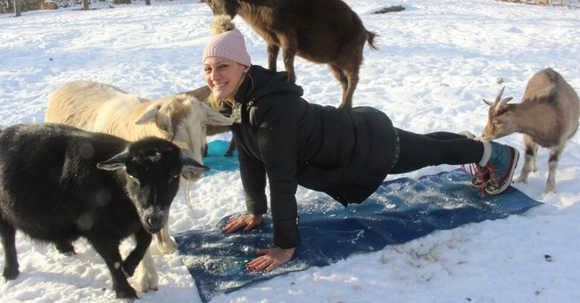 Farm team: Minor league Yard Goats offering yoga with goats