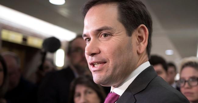 Sen. Rubio Compares Border Security to TSA Airport Security