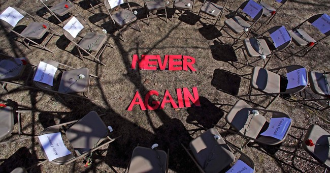 'Never Again!' Belongs to the Holocaust— Not an Anti-gun Rights Book and Campaign