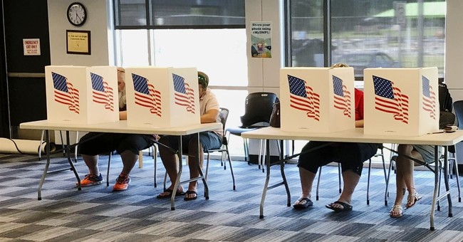 Anti-Gun Group Argues Lawfully Carried Guns In Polling Places Is Intimidation
