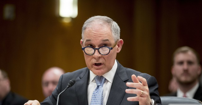 Scott Pruitt and the Return of the Black Cat News Story